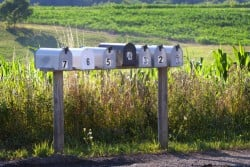 Seven numbered mail boxes along a country road in the summertime