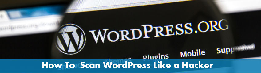 scan-wordpress